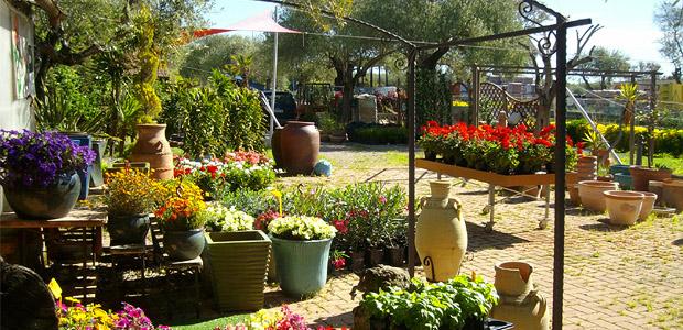 il garden foto 1